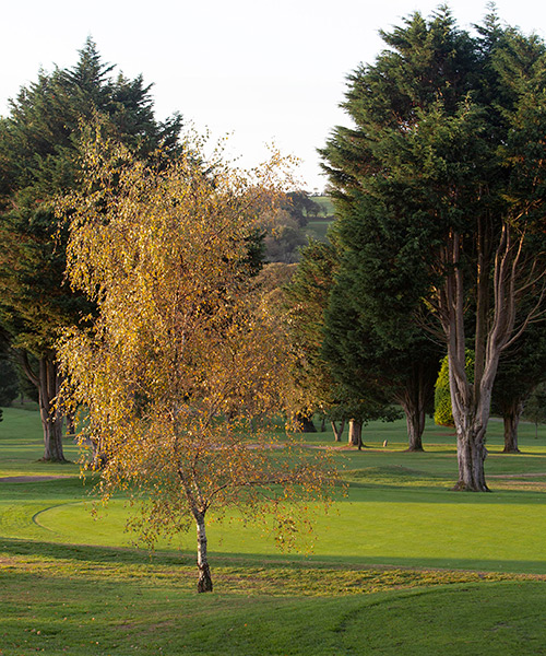 elfordleigh golf hotel